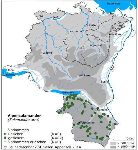 Amphibienkarte_Alpensalamander